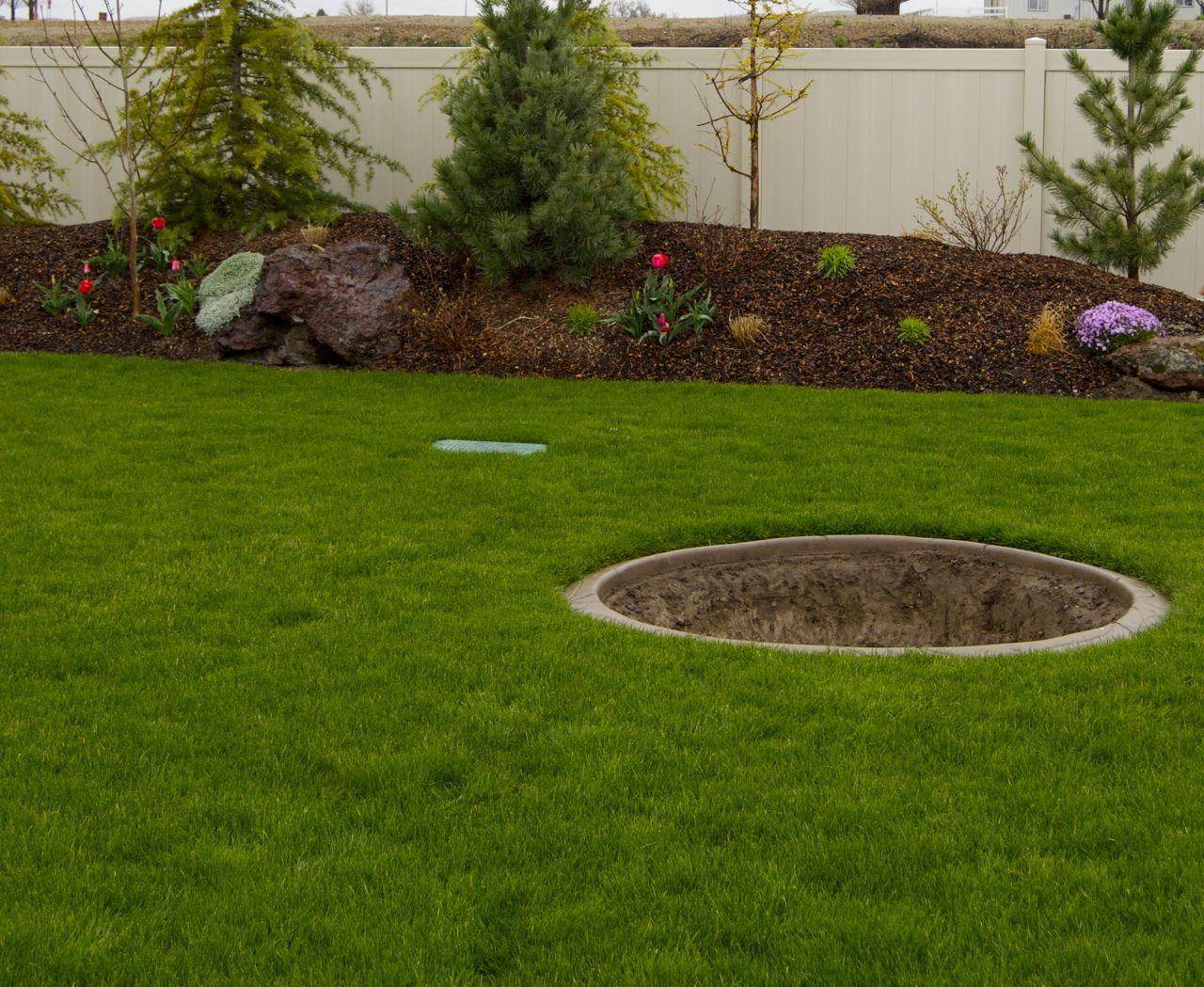 landscaping ideas for wet backyard mystical designs and tags