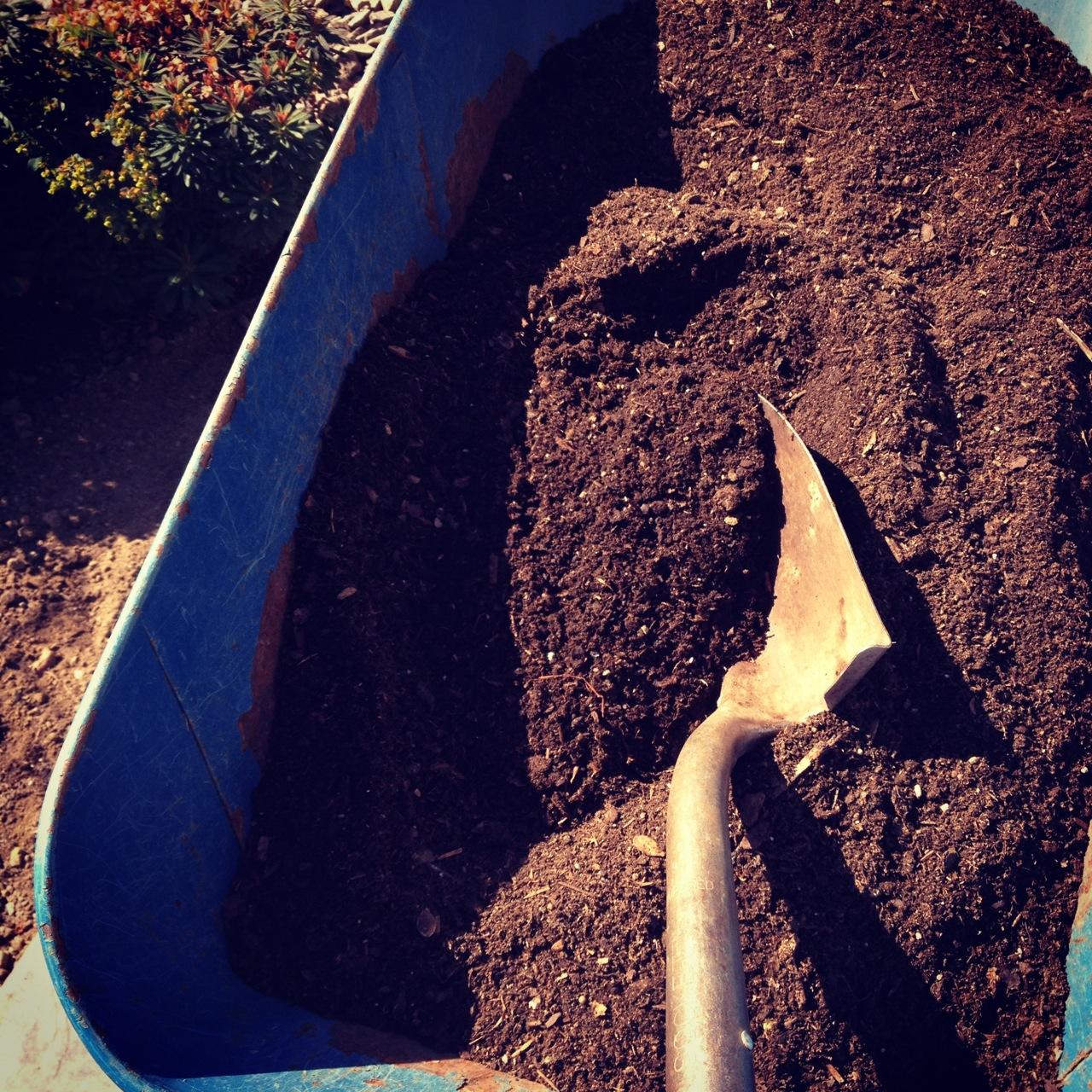 October Gardening Under the Big, Bright Boise Sky – igardendaily