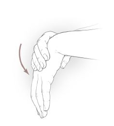 wrist_extensor_stretches